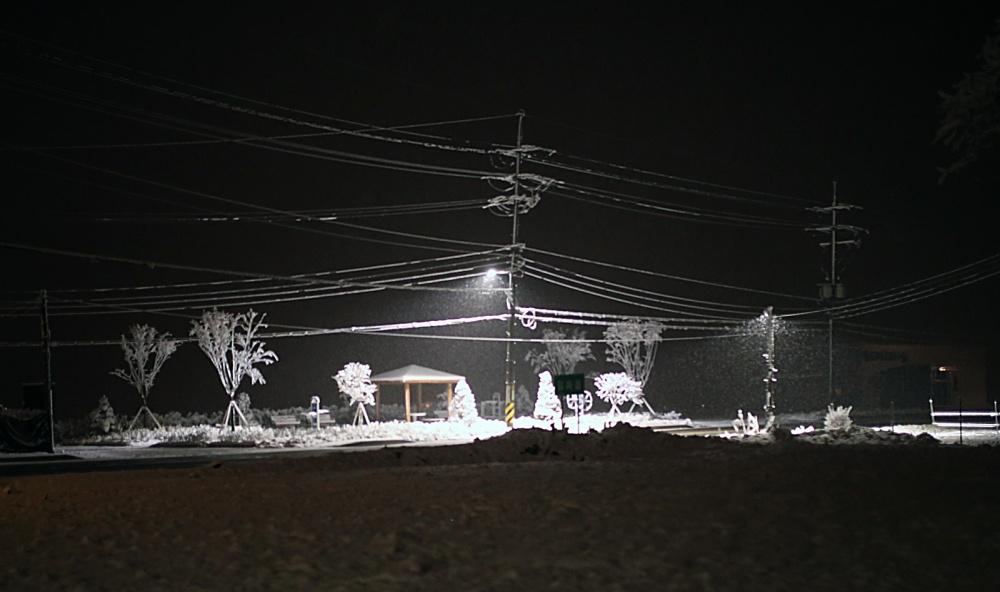 Snow-&-Park_1600px.jpg