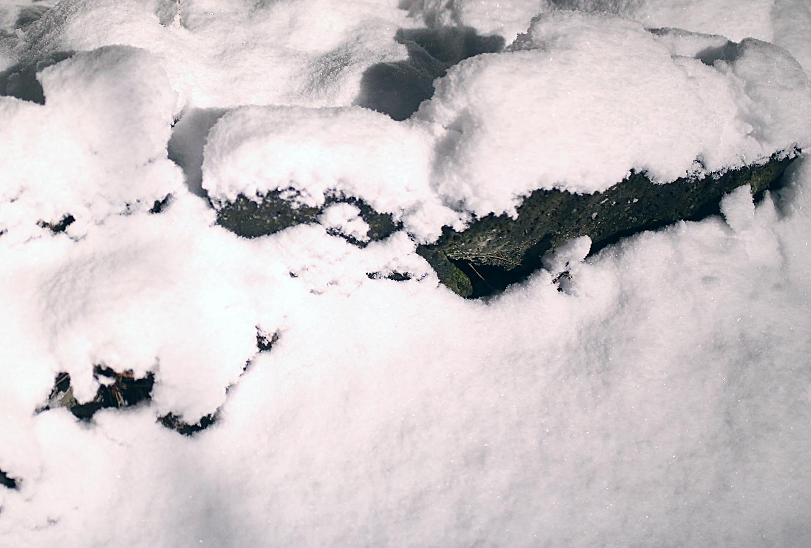 Snow-&-stone_1600px.jpg