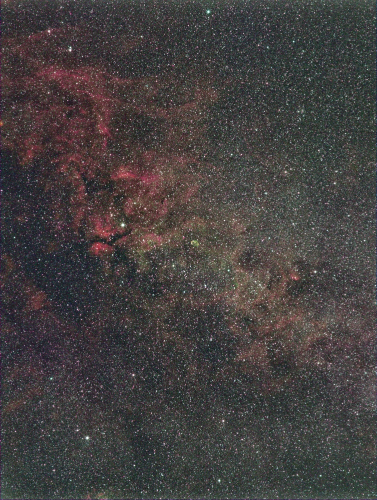 Cygnus_2018SEP05_55mm_1600px.jpg