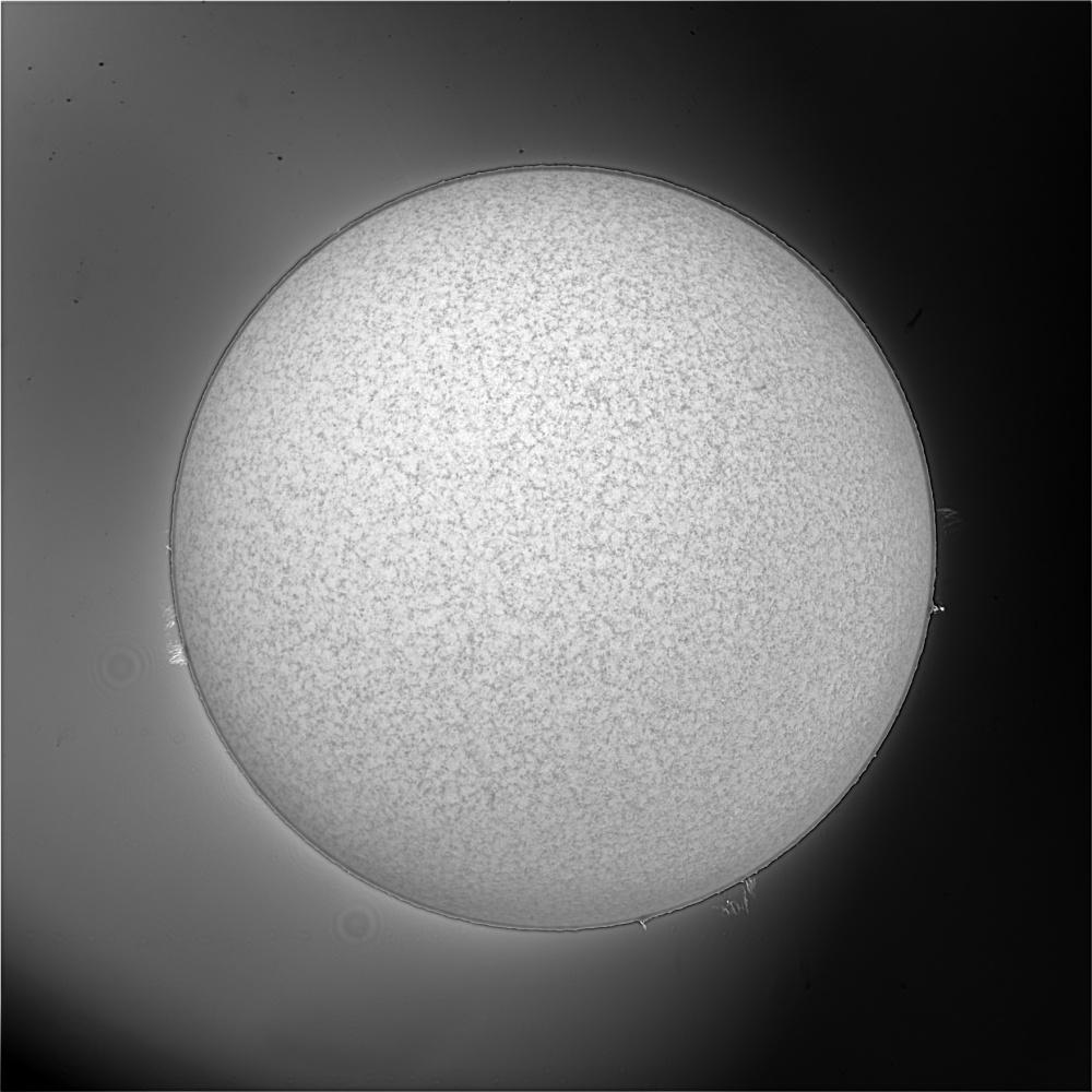 Sun_20200423_08_50_50.jpg